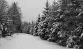 Trail Walk Houffalize - La Roche Plate - Photo 11