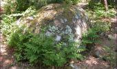 Trail Walk Houffalize - Blancs Bois - Photo 9