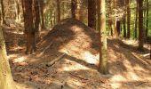 Trail Walk Houffalize - Blancs Bois - Photo 20