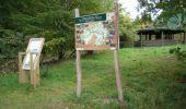 Trail Walk Houffalize - Blancs Bois - Photo 40