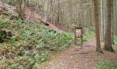 Trail Walk Houffalize - Blancs Bois - Photo 21