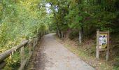Trail Walk Houffalize - Blancs Bois - Photo 4
