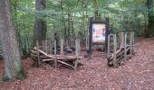 Trail Walk Houffalize - Blancs Bois - Photo 27