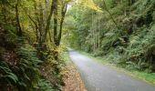 Trail Walk Houffalize - Blancs Bois - Photo 3