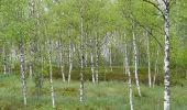 Trail Walk Houffalize - Blancs Bois - Photo 39
