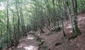 Trail Motor Houffalize - L'Ardenne par les vallées sauvages - Photo 54