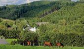 Trail Motor Houffalize - L'Ardenne par les vallées sauvages - Photo 42