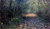 Randonnée Marche LA QUEUE-EN-BRIE - Forêt de Notre Dame - Photo 2