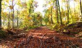 Randonnée Marche LONGPONT - en foret de Retz_ 41_Longpont_Vertes Feuilles_AR - Photo 83