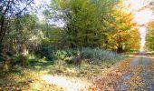 Randonnée Marche LONGPONT - en foret de Retz_ 41_Longpont_Vertes Feuilles_AR - Photo 153