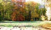 Randonnée Marche LONGPONT - en foret de Retz_ 41_Longpont_Vertes Feuilles_AR - Photo 112