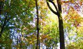 Randonnée Marche LONGPONT - en foret de Retz_ 41_Longpont_Vertes Feuilles_AR - Photo 200