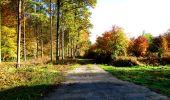 Randonnée Marche LONGPONT - en foret de Retz_ 41_Longpont_Vertes Feuilles_AR - Photo 198