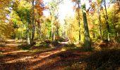 Randonnée Marche LONGPONT - en foret de Retz_ 41_Longpont_Vertes Feuilles_AR - Photo 75