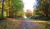 Randonnée Marche LONGPONT - en foret de Retz_ 41_Longpont_Vertes Feuilles_AR - Photo 66