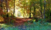 Randonnée Marche LONGPONT - en foret de Retz_ 41_Longpont_Vertes Feuilles_AR - Photo 174