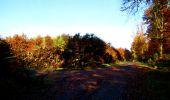 Randonnée Marche LONGPONT - en foret de Retz_ 41_Longpont_Vertes Feuilles_AR - Photo 223