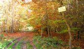 Randonnée Marche LONGPONT - en foret de Retz_ 41_Longpont_Vertes Feuilles_AR - Photo 74
