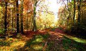 Randonnée Marche LONGPONT - en foret de Retz_ 41_Longpont_Vertes Feuilles_AR - Photo 49