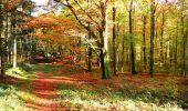 Randonnée Marche LONGPONT - en foret de Retz_ 41_Longpont_Vertes Feuilles_AR - Photo 29