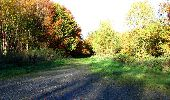 Randonnée Marche LONGPONT - en foret de Retz_ 41_Longpont_Vertes Feuilles_AR - Photo 70