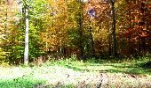 Randonnée Marche LONGPONT - en foret de Retz_ 41_Longpont_Vertes Feuilles_AR - Photo 127