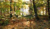 Randonnée Marche LONGPONT - en foret de Retz_ 41_Longpont_Vertes Feuilles_AR - Photo 154