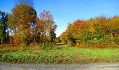 Randonnée Marche LONGPONT - en foret de Retz_ 41_Longpont_Vertes Feuilles_AR - Photo 35