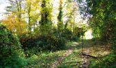 Randonnée Marche LONGPONT - en foret de Retz_ 41_Longpont_Vertes Feuilles_AR - Photo 67