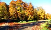 Randonnée Marche LONGPONT - en foret de Retz_ 41_Longpont_Vertes Feuilles_AR - Photo 62