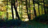 Randonnée Marche LONGPONT - en foret de Retz_ 41_Longpont_Vertes Feuilles_AR - Photo 173