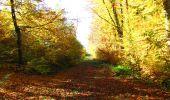 Randonnée Marche LONGPONT - en foret de Retz_ 41_Longpont_Vertes Feuilles_AR - Photo 133