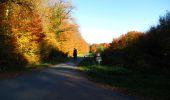 Randonnée Marche LONGPONT - en foret de Retz_ 41_Longpont_Vertes Feuilles_AR - Photo 40
