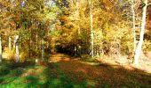 Randonnée Marche LONGPONT - en foret de Retz_ 41_Longpont_Vertes Feuilles_AR - Photo 197