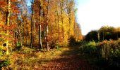 Randonnée Marche LONGPONT - en foret de Retz_ 41_Longpont_Vertes Feuilles_AR - Photo 212