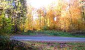 Randonnée Marche LONGPONT - en foret de Retz_ 41_Longpont_Vertes Feuilles_AR - Photo 132
