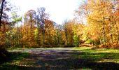Randonnée Marche LONGPONT - en foret de Retz_ 41_Longpont_Vertes Feuilles_AR - Photo 149