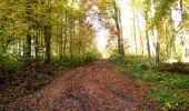 Randonnée Marche LONGPONT - en foret de Retz_ 41_Longpont_Vertes Feuilles_AR - Photo 176