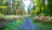 Randonnée Marche LONGPONT - en foret de Retz_ 41_Longpont_Vertes Feuilles_AR - Photo 206