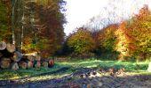 Randonnée Marche LONGPONT - en foret de Retz_ 41_Longpont_Vertes Feuilles_AR - Photo 228