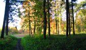 Randonnée Marche LONGPONT - en foret de Retz_ 41_Longpont_Vertes Feuilles_AR - Photo 1