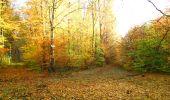 Randonnée Marche LONGPONT - en foret de Retz_ 41_Longpont_Vertes Feuilles_AR - Photo 246