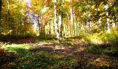 Randonnée Marche LONGPONT - en foret de Retz_ 41_Longpont_Vertes Feuilles_AR - Photo 72