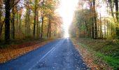 Randonnée Marche LONGPONT - en foret de Retz_ 41_Longpont_Vertes Feuilles_AR - Photo 237