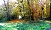 Randonnée Marche LONGPONT - en foret de Retz_ 41_Longpont_Vertes Feuilles_AR - Photo 199