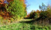 Randonnée Marche LONGPONT - en foret de Retz_ 41_Longpont_Vertes Feuilles_AR - Photo 101