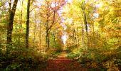 Randonnée Marche LONGPONT - en foret de Retz_ 41_Longpont_Vertes Feuilles_AR - Photo 137
