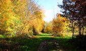 Randonnée Marche LONGPONT - en foret de Retz_ 41_Longpont_Vertes Feuilles_AR - Photo 64