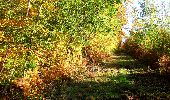 Randonnée Marche LONGPONT - en foret de Retz_ 41_Longpont_Vertes Feuilles_AR - Photo 41