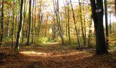 Randonnée Marche LONGPONT - en foret de Retz_ 41_Longpont_Vertes Feuilles_AR - Photo 191